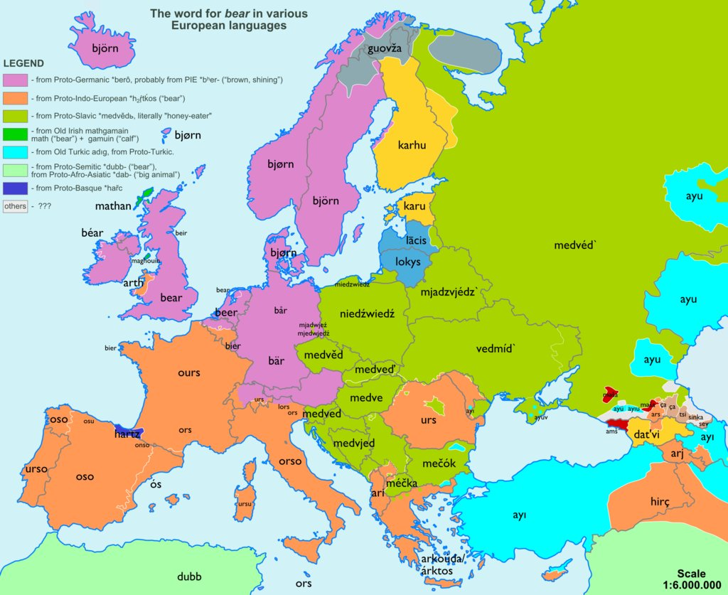 European Maps Of Language Groups Words For Bear Church Beer Etc