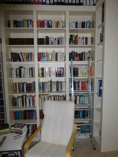 Novels shelves2